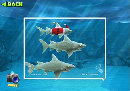 饥饿的鲨鱼进化圣诞礁鲨宝宝详解 圣诞礁鲨宝宝怎么样