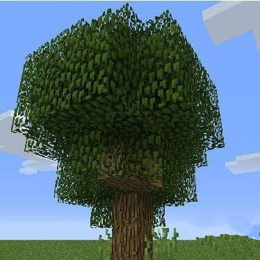 我的世界巨型橡树种植技巧分析