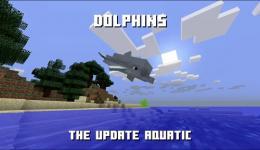 我的世界海豚在哪 手机版海豚位置