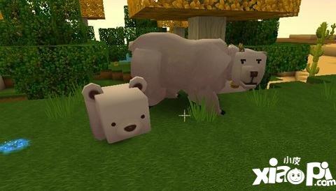 【迷你世界的冰熊吃什么】迷你世界冰熊吃什么 迷你世界冰熊食物