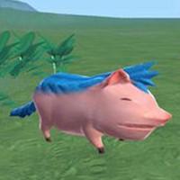 [创造与魔法沙猪在哪里]创造与魔法猪怎么样 创造与魔法猪属性图鉴
