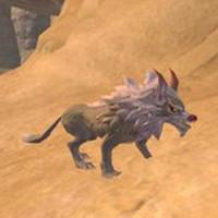 [创造与魔法沙漠狼饲料]创造与魔法沙漠狼怎么样 创造与魔法沙漠狼属性图鉴