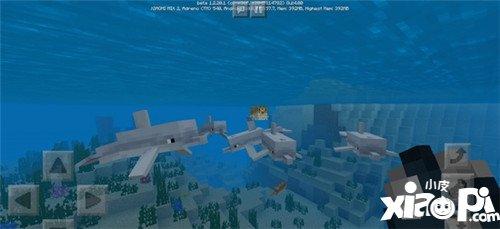 我的世界1.2.20.1Beta发布 海豚和海底废墟加入