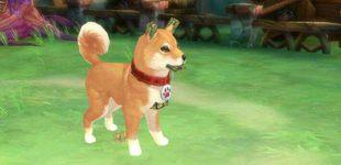 风之大陆9月6日更新维护公告 新增家园小狗玩法