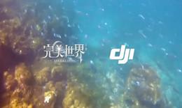 完美世界手游联手DJI大疆 跨界诠释飞行真义