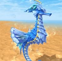 创造与魔法碧波海马属性图鉴 碧波海马怎么样