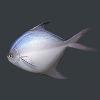 明日之后银鲳鱼获得方式 银鲳鱼怎么获得