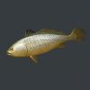 明日之后黄鱼获得方式 黄鱼怎么获得