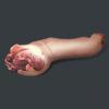 明日之后肮脏的猪蹄获得方式 肮脏的猪蹄怎么获得