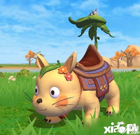 创造与魔法阳光龙猫坐骑怎么样 阳光龙猫坐骑爆料