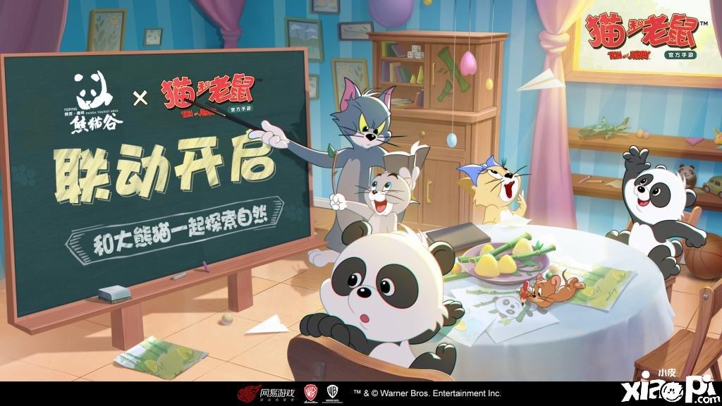 《猫和老鼠》宣布与佛坪熊猫谷展开奇妙联动