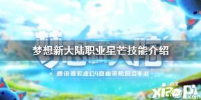 《梦想新大陆》星芒职业技能测评介绍