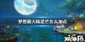 《梦想新大陆》星芒加点测评推荐分享