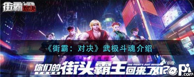 《街霸:对决》武极斗魂攻略介绍