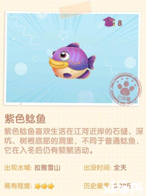 《摩尔庄园》手游紫色鲶鱼在哪
