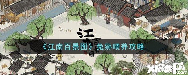 江南百景图兔狲喂养攻略