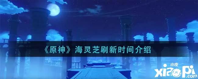 《原神》海灵芝刷新时间介绍