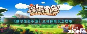 《摩尔庄园手游》丛林探险玩法攻略