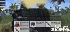 在和平精英游戏中拿到信号枪之后该怎么做呢?